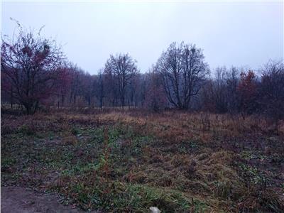 Vanzare Teren 952 m2  pozitionat in zona strazii Campului !