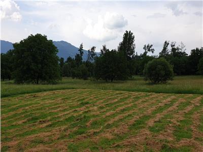 Vanzare teren parcelat intravilan in Bistrita Bargaului