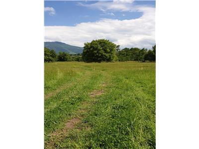 Vanzare parcela de teren in suprafata de 713 mp (7 Arii) - Bistrita Bargaului, zona Blidireasa